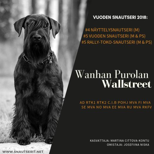 Wanhan Purolan Wallstreet-2.png